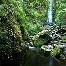 Erskine Falls by John Sharp