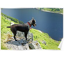 The Hound Of Haweswater Poster