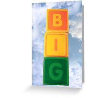 big assorted toy childs play blocks Greeting Card