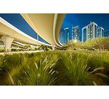 Urban Jungle II Photographic Print