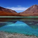 Laguna Di Verde by World Images Art
