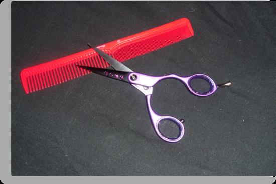 Scissors and Comb by UnUnique