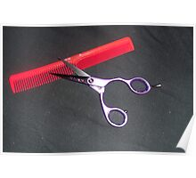 Scissors and Comb Poster
