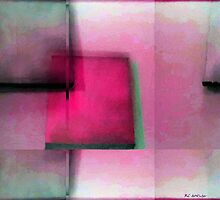 Asymmetrical Symmetry by RC deWinter