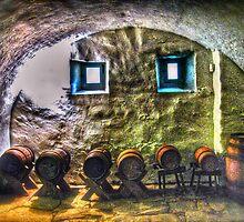 Cellar Silence by Frank Sant'Agata
