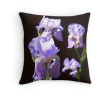 Violet Irises Throw Pillow