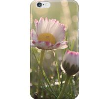 Dreamy Daisy Iphone Cover iPhone Case/Skin