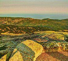 Cadillac Mountain by Frank Sant'Agata