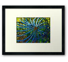 Twisty Garden Art By Jonathan Green Framed Print