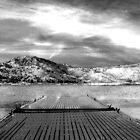 Evening at the Lake by Corri Gryting Gutzman