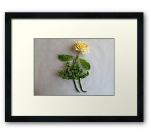 Playing With Vegetables : Framed Print