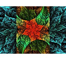 Quilted Flower Photographic Print