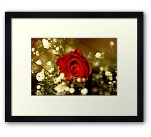 Gypsy Rose Framed Print