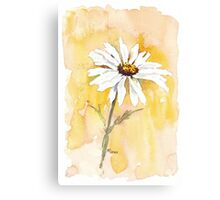 One perfect daisy Canvas Print