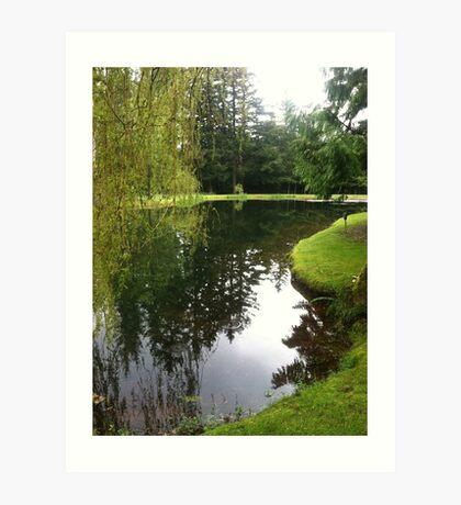 Pond landscape Art Print