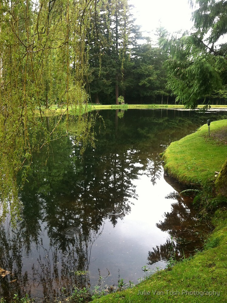Pond landscape by Julie Van Tosh Photography