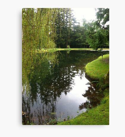 Pond landscape Canvas Print