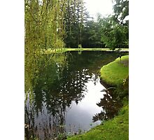 Pond landscape Photographic Print