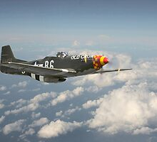 P51D Mustang - Old Crow by Pat Speirs
