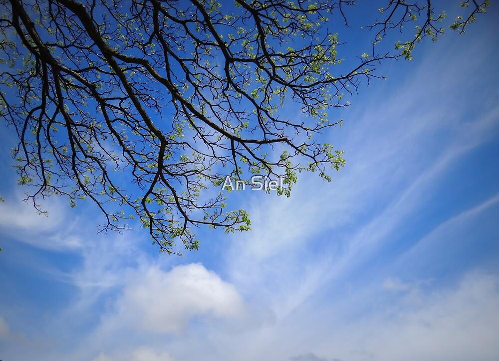 greeting the sky by Angelika Sielken