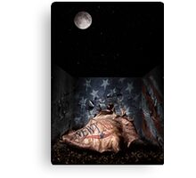 Big Ideas Under The Moon Light Canvas Print