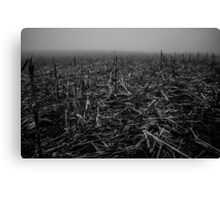 barren landscape Canvas Print