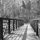 Bridge 2 by Valeria Lee
