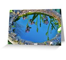 Water on the Iris on the water Greeting Card