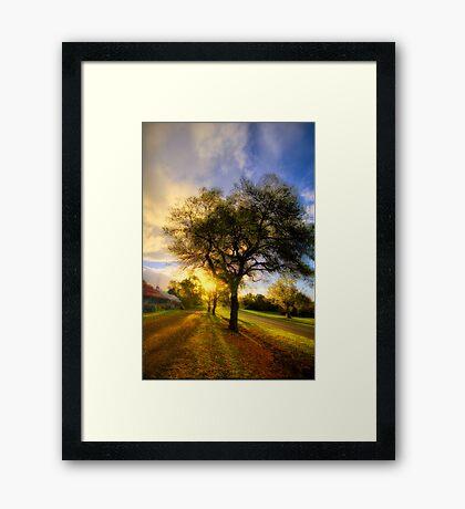 Country Golden Hour Framed Print