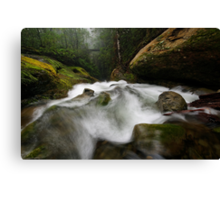 Top of the Chasm Canvas Print