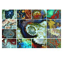 Worlds Within Photographic Print