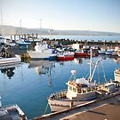 Wollongong Harbour by Anna Ryan