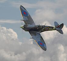 Spitfire - Elegant Icon by warbirds