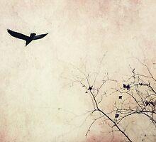 Raven hued secrets by Priska Wettstein