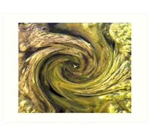 Caught in a Whirlpool Art Print