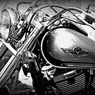 Kawasaki Vulcan Motorcycle © by Lou Wilson