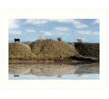 highest pasture view reflection Art Print