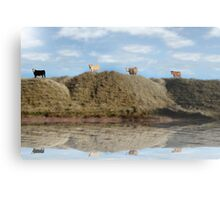 highest pasture view reflection Metal Print