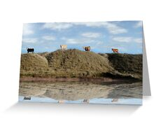 highest pasture view reflection Greeting Card