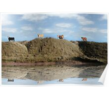 highest pasture view reflection Poster