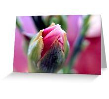 Darling Buds of May (Macro) Greeting Card
