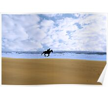 horse riding on kerry shore Poster