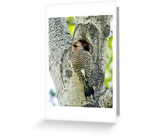 At the nest  Greeting Card