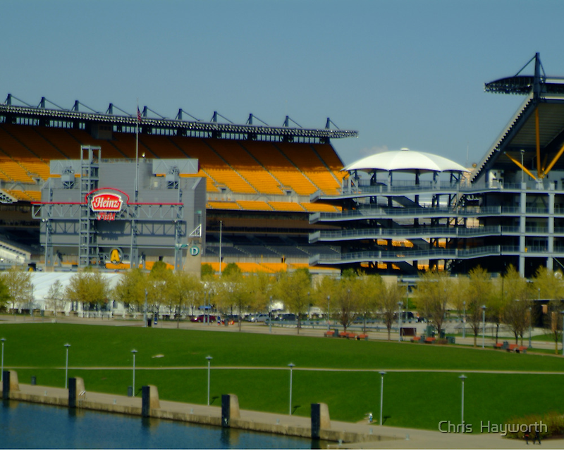 Lets go Steelers by Chris  Hayworth