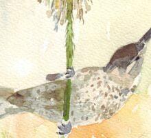 Amethyst Sunbird female Sticker