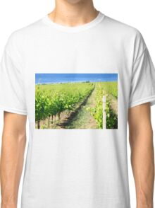 Grapevines in a vineyard. Photographed in Tuscany, Italy Classic T-Shirt