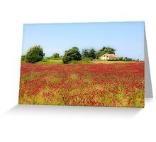 A field of common sainfoin (Onobrychis viciifolia) Photographed in Tuscany, Italy  Greeting Card