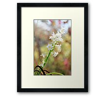 Bells and Bokeh Framed Print