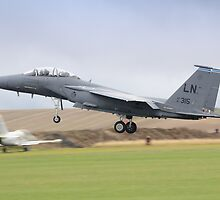 USAF F-15E Strike Eagle by Nigel Bangert