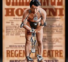 The Great Houdini by Richard  Gerhard